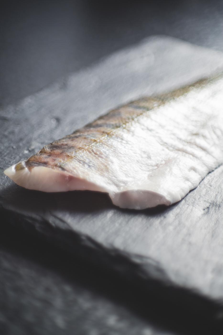 Fischzucht – ein Megatrend im Verborgenen